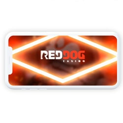 Why Red Dog Casino is the Best Live Casino for US Players